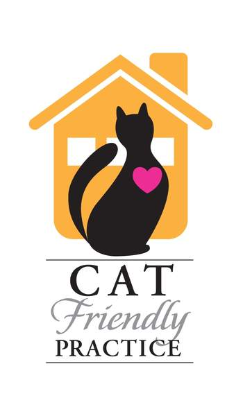 Cat friendly practice information